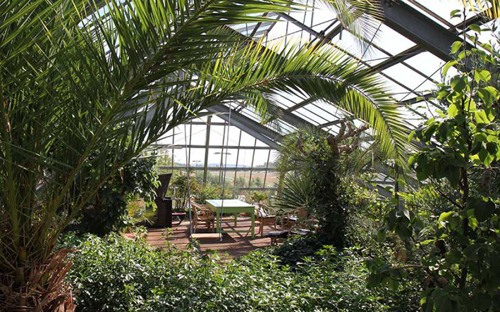 Expo Lounge auf Tour: Das grüne Paradies