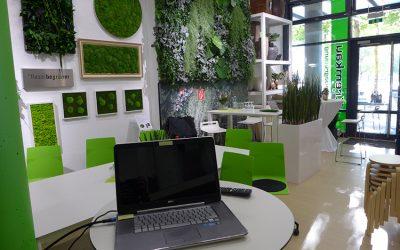 Expo Lounge vorm Grünen Büro